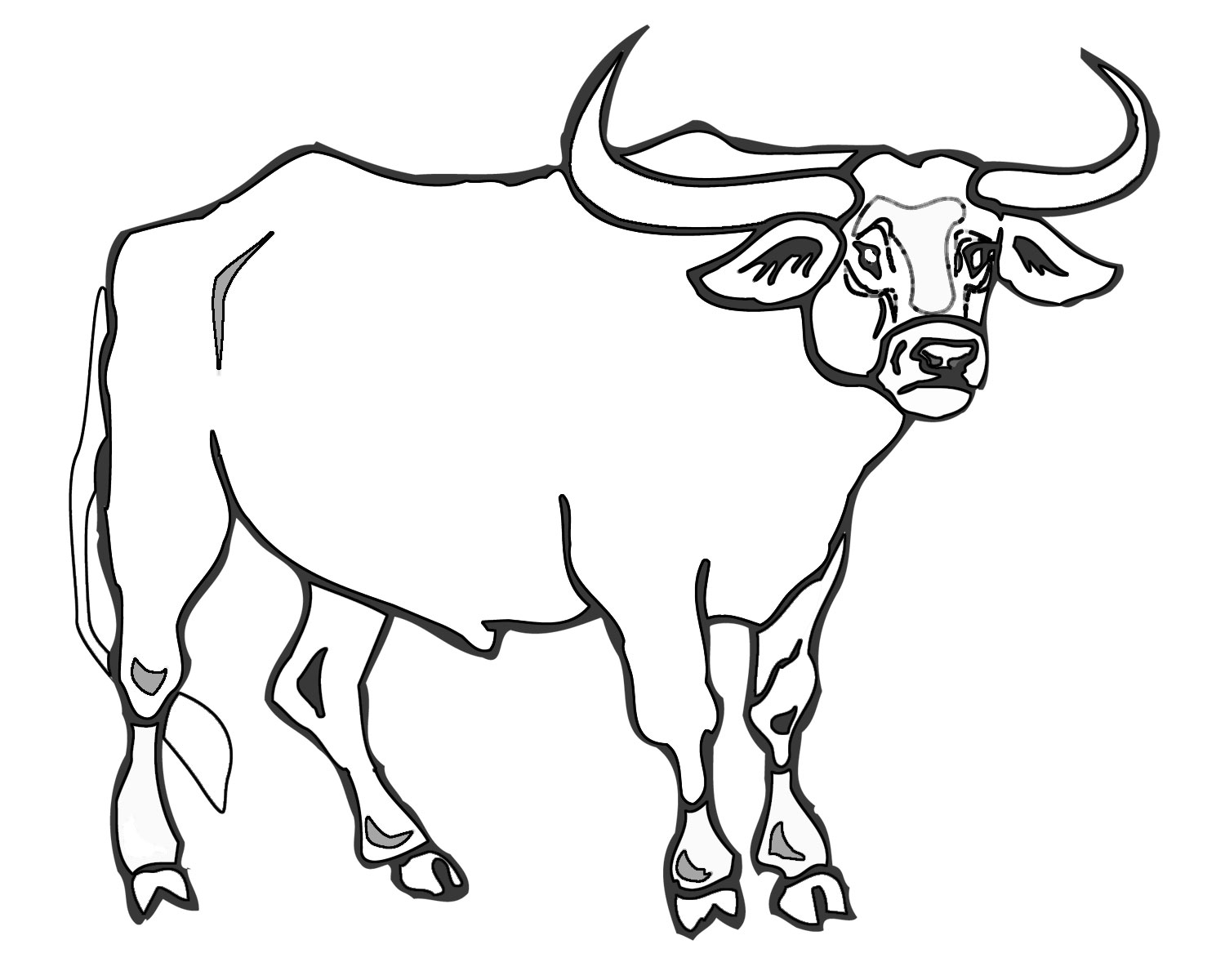 ccg colouring in bull Benny the Bull Coloring Pages  Bull Coloring Pictures